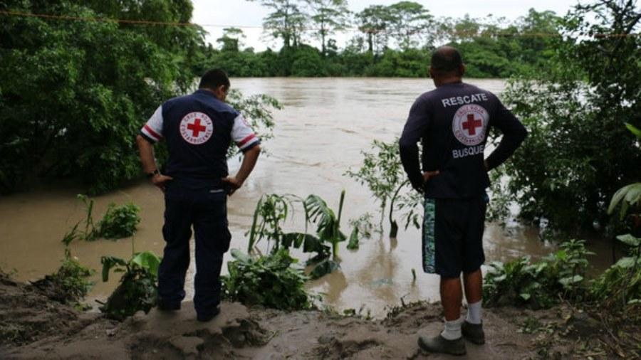 Turista muere al caer árbol sobre lancha en la que viajaba en Costa Rica