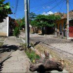 Mapa de ubicación.Sitio en el que el agente habría atacado a su pareja ayer en la madrugada, en la urbanización Santa Ana Norte, en el polígono 2 de la calle C. Foto EDH / Mauricio guevara