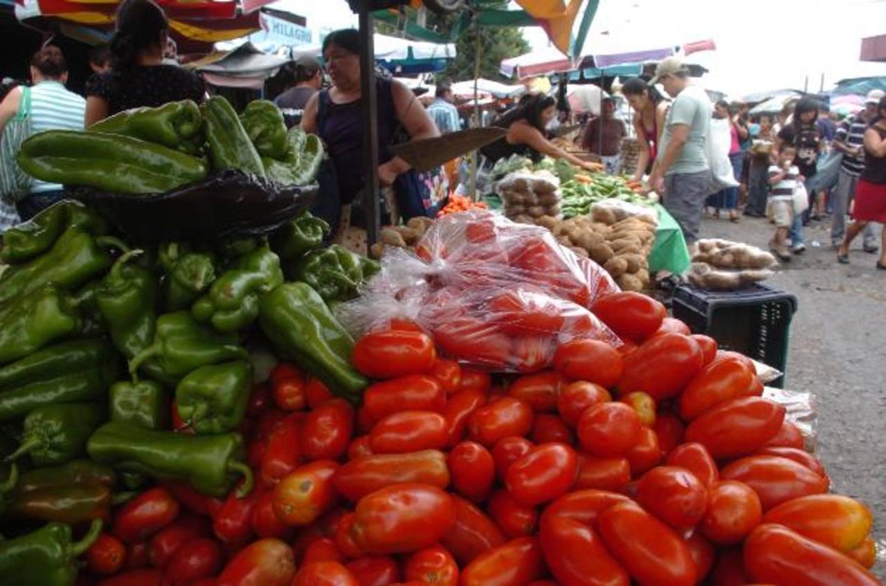 Los productos agrícolas nicaragüenses sin proceso de envasado no pagarán IVA. Foto EDH/archivo