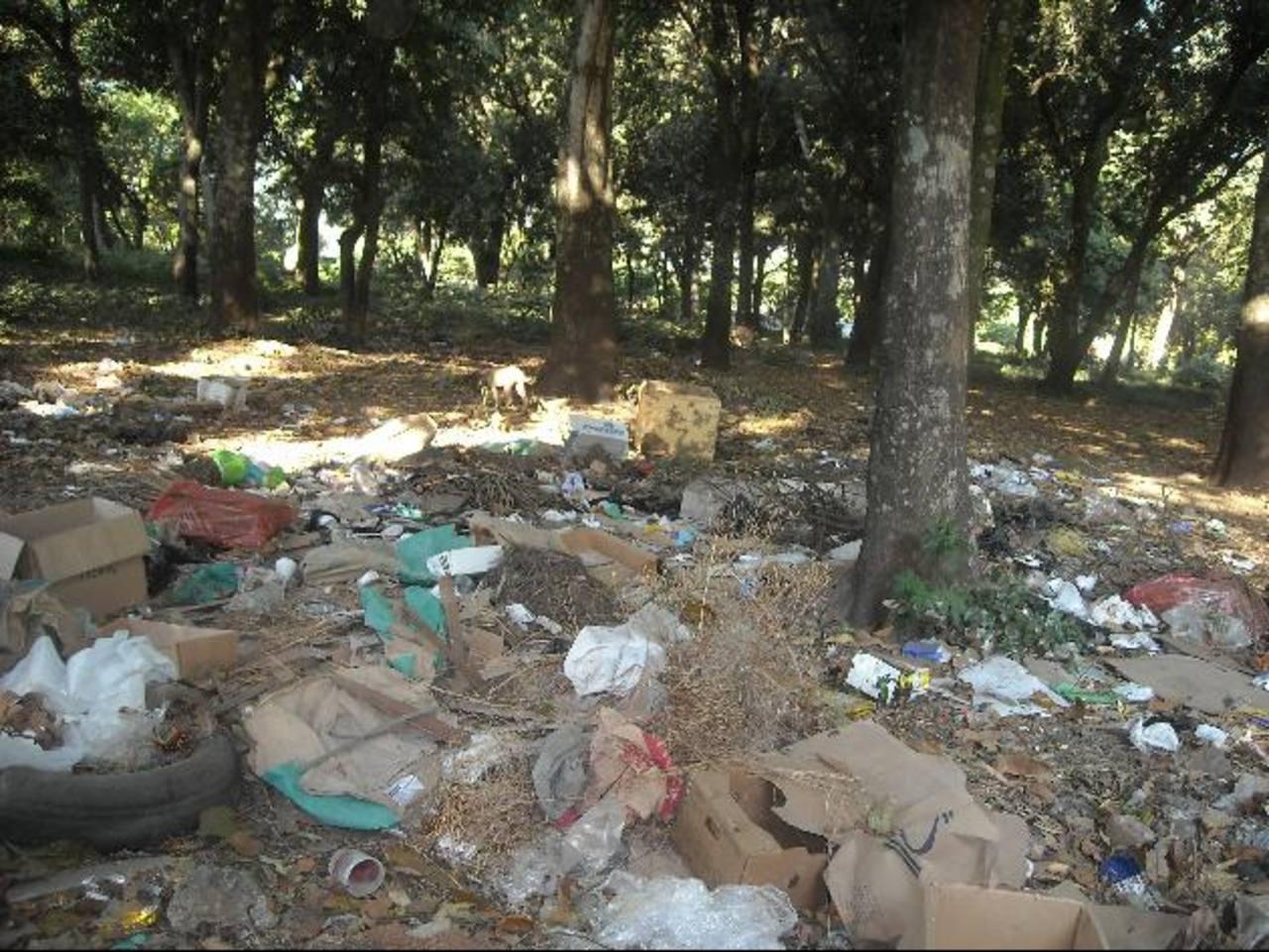 La misma comunidad lanza la basura a cielo abierto, sin que ninguna autoridad haga algo. Foto EDH / Milton Jaco
