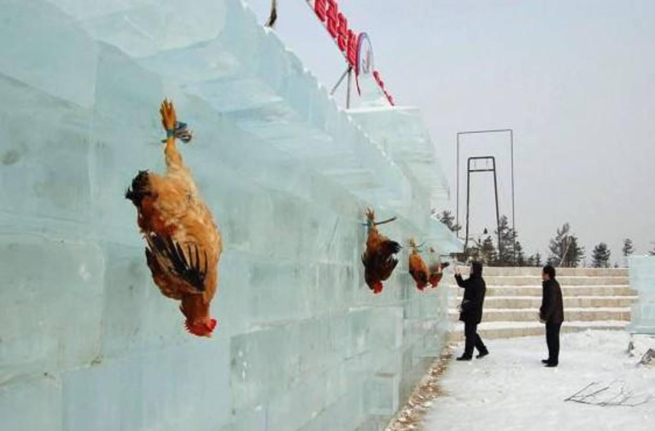 """Practican """"tiro al pollo"""" en festival chino"""