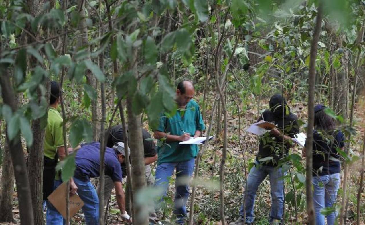 La escena del homicidio fue encontrada en Ciudad Delgado. Foto EDH / Óscar Mira