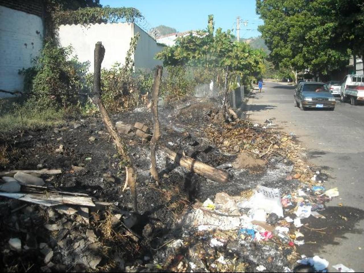 La negligencia de las personas es una de las causas de los incendios en predios baldíos. Foto EDH / Milton jaco