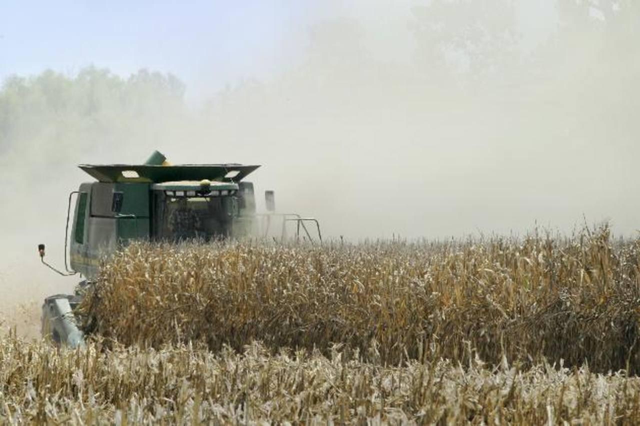 La sequía se ha mantenido en el Medio Oeste y Este de Estados Unidos. Foto EDH/archivo