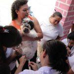 En Santa Ana, jóvenes vacunan a un perro. La jornada fue promovida por el Ministerio de Salud. Foto edh / ARCHIVO