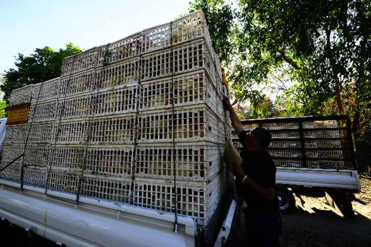 Uno de los decomisos se hizo en Ciudad Delgado. Foto Omar C.