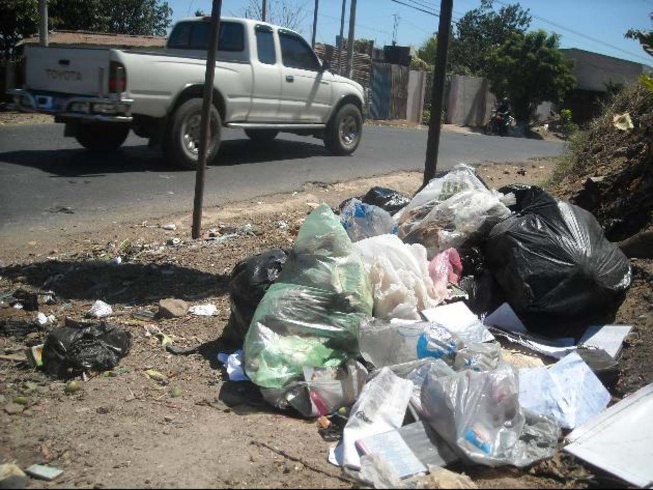 Este basurero está en la 31a. Calle Poniente, entre 18a y 20a. Avenida Sur. Foto EDH / milton jaco