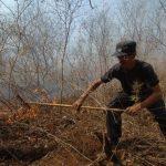 Bomberos ruega a la población no quemar basura en zonas de maleza seca para evitar más incendios.