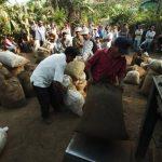 Con la roya, Centro América perderá cuatro millones de quintales de café. foto edh