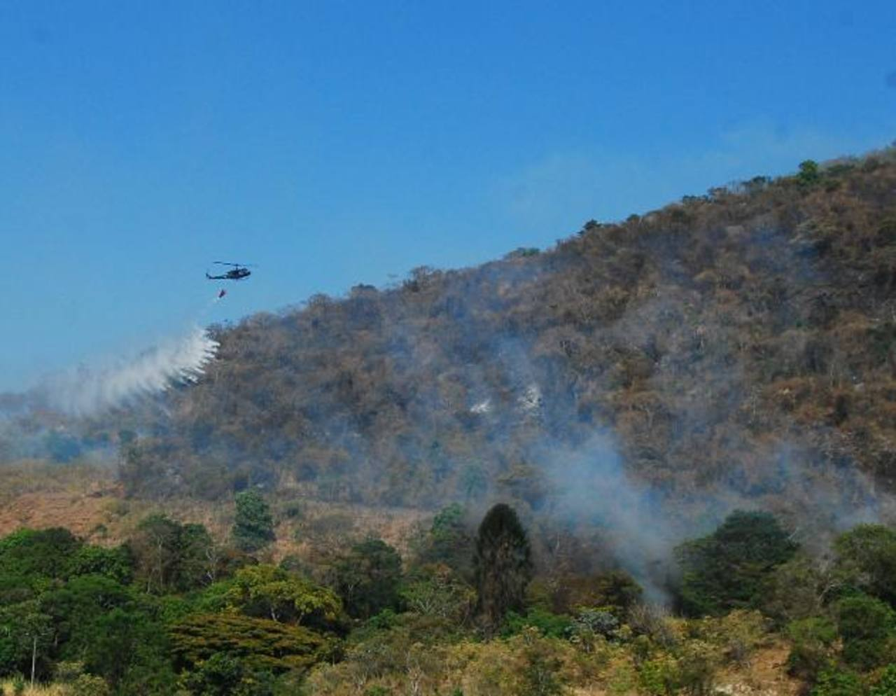 De 25 a 30 hectáreas fueron consumidas por las llamas en las faldas del cerro San Jacinto. Foto EDH / René Estrada