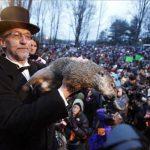 Perdonan vida a marmota Phil, tras acusarla de fallar pronóstico