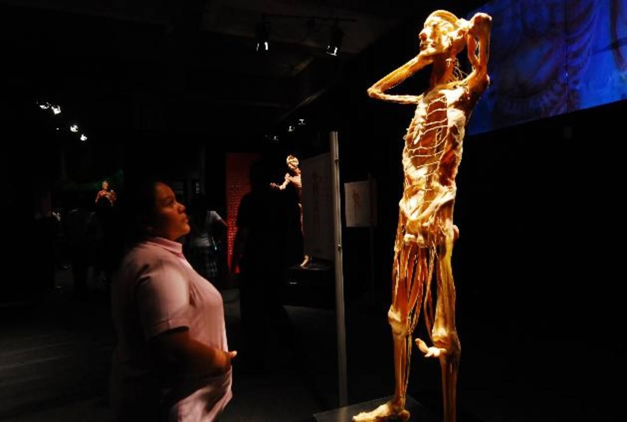 Nuestro Cuerpo es el centro de interés en esta exposición educativa. Foto EDH/Marlon Hernández