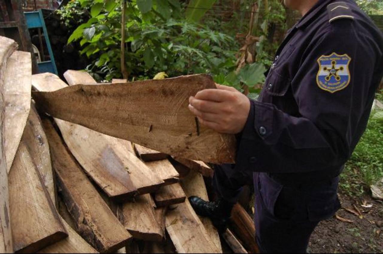 La PNC sugiere que cuando alguien solicite el permiso para talar árboles, también pida la hoja guía para transportar madera.