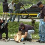 En octubre de 2008, sobre la autopista a Comalapa, autoridades salvadoreñas decomisaron a miembros de la MS-13, un cohete antitanque del tipo LAW y varios fusiles de alto calibre. foto edh / ARCHIVO