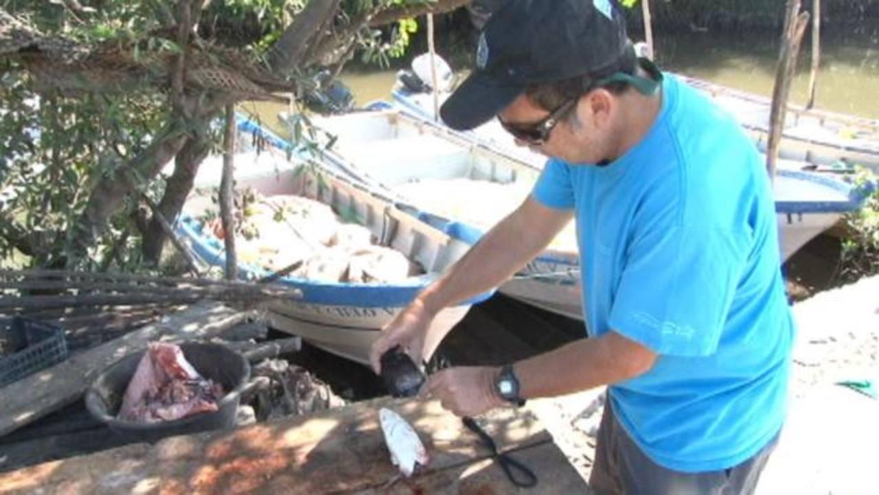 Randall Arauz durante un recorrido en San Luis La Herradura, departamento de La Paz. foto edh / Carolina Amaya