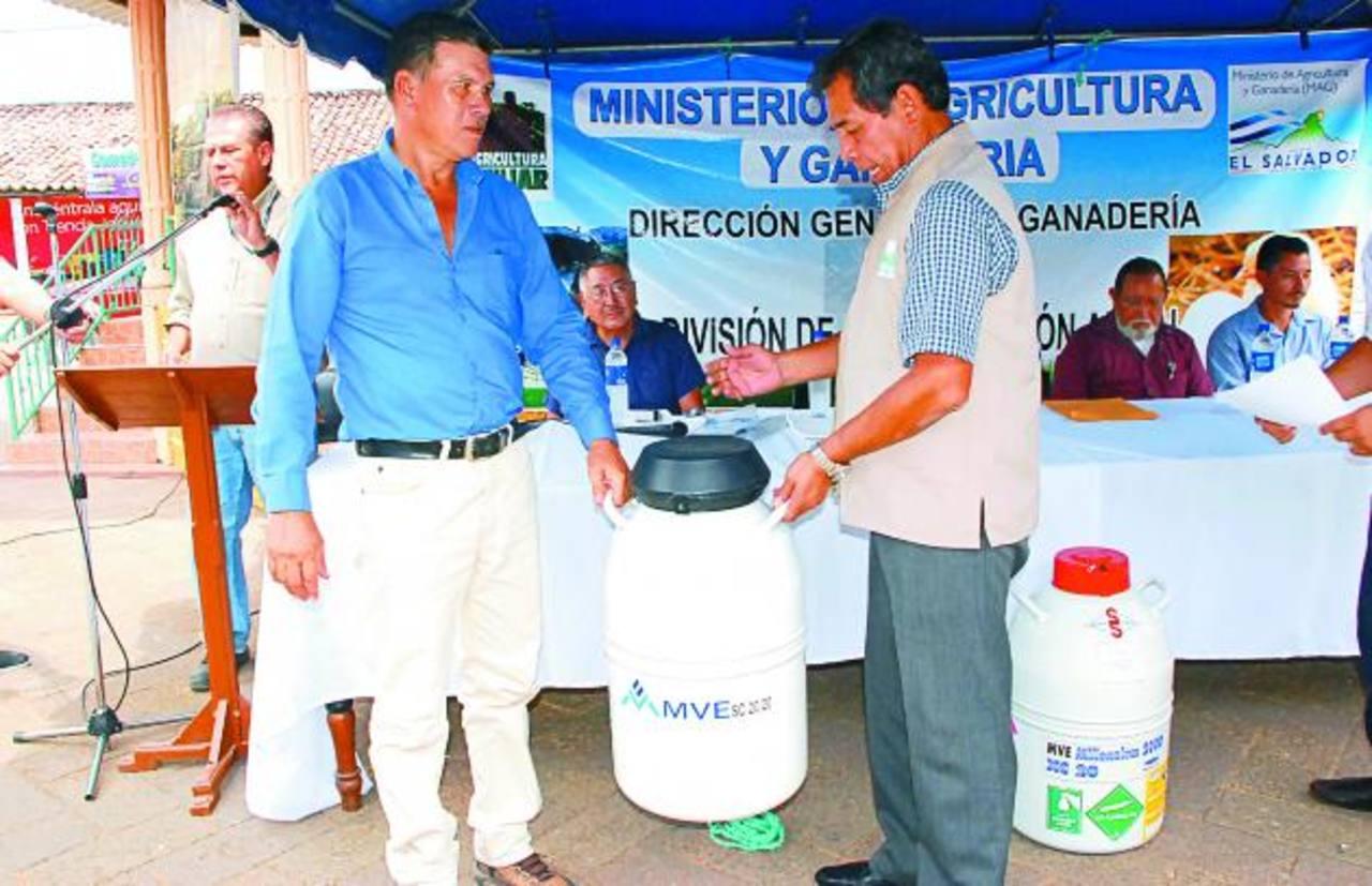 La entrega de los bancos de semen se registró en la presente semana en la zona norte de La Unión. Foto EDH /insy mendoza