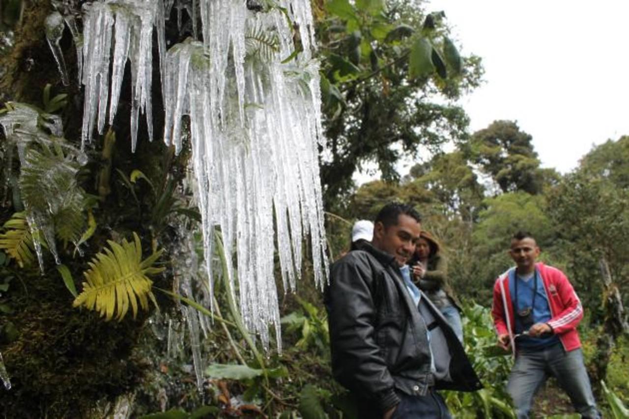 El guía turístico César Camilo fotografió los efectos de la helada en El Pital. Foto EDH /