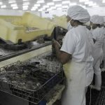 La mayor parte de los productos de Centroamérica entrarán libres de arancel al mercado europeo.