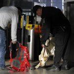 Miller, un perro de la Policía de Detección de Explosivos, huele una bolsa en la estación de Back Bay. Foto/ Reuters