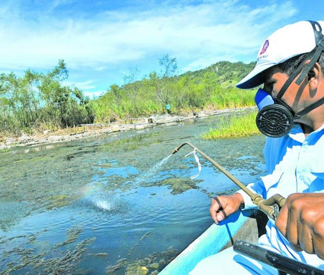 Ilopango es una de las zonas de transmisión de la malaria. Personal de Salud aplica herbicida en el lago para matar las larvas.