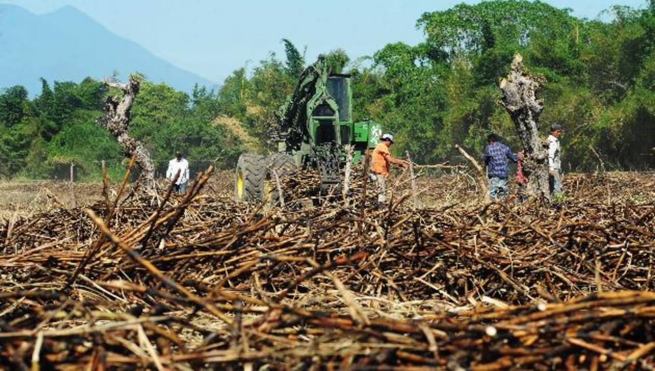 La zafra 2012-13 concluyó con una producción de 750 mil toneladas de azúcar. foto edh /archivo