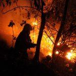Bomberos y vecinos de la colonia Eucalipto II, en Mejicanos, intentan sofocar las llamas. Foto edh / Marlon Hernández