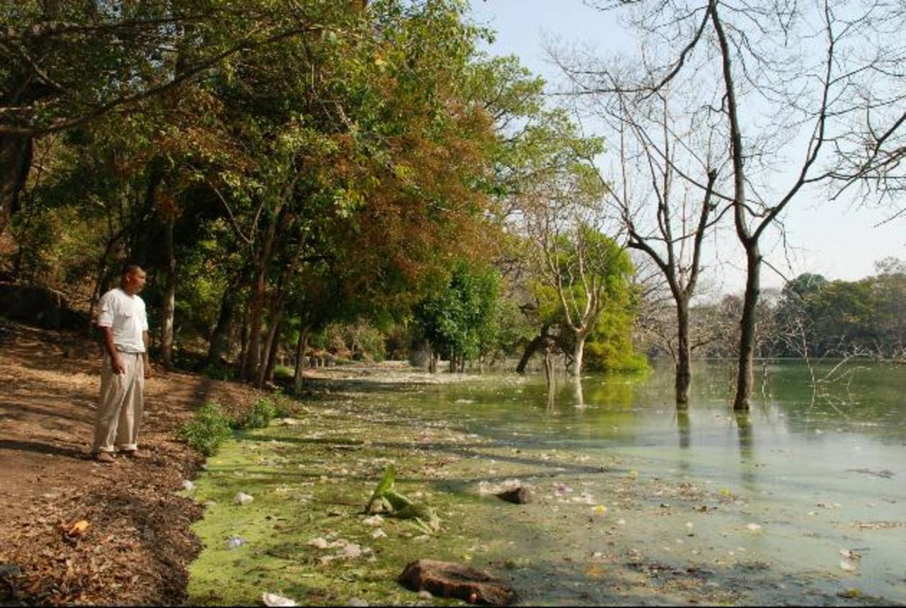 Los senderos alrededor de la laguna Cuzcachapa se han perdido. Foto EDH / Cristian Díaz