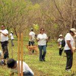 Con la reforestación se buscó promover la conciencia ambiental entre los empleados de Aeroman.