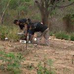 En este terreno fue encontrado por las autoridades el cadáver de Juan Palacios, de 20 años de edad. Foto EDH Lilibeth Sánchez, vía Twitter.