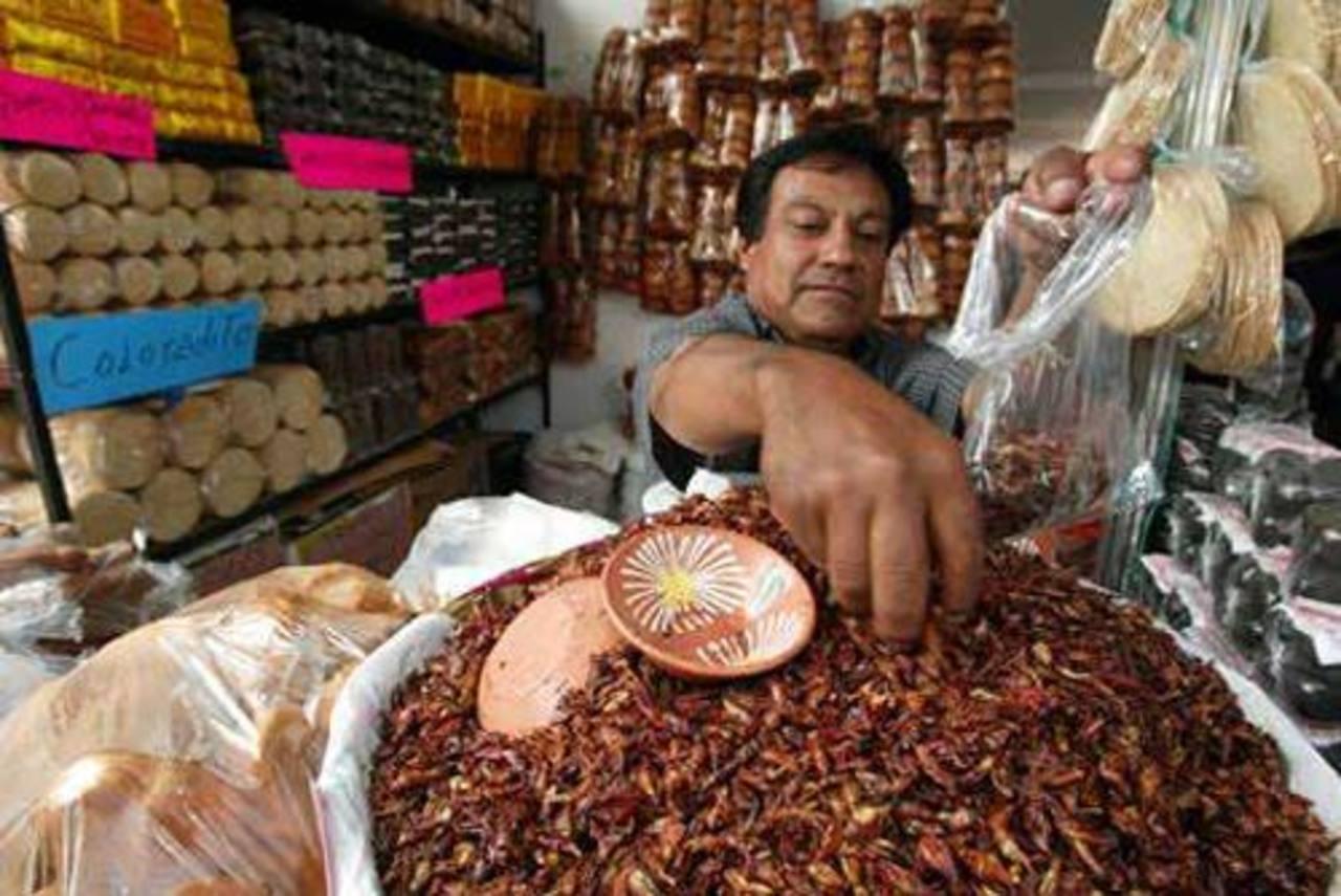 FAO: Consumir insectos es saludable