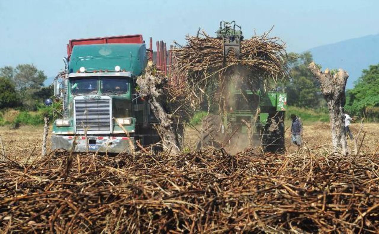 El Salvador podría exportar hasta 24 mil toneladas de azúcar a la Unión Europea. Foto EDH/efe