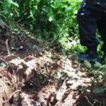 El cadáver de una persona fue localizado semienterrado en Lomas del Río, Soyapango. Foto vía Twitter Jaime Anaya