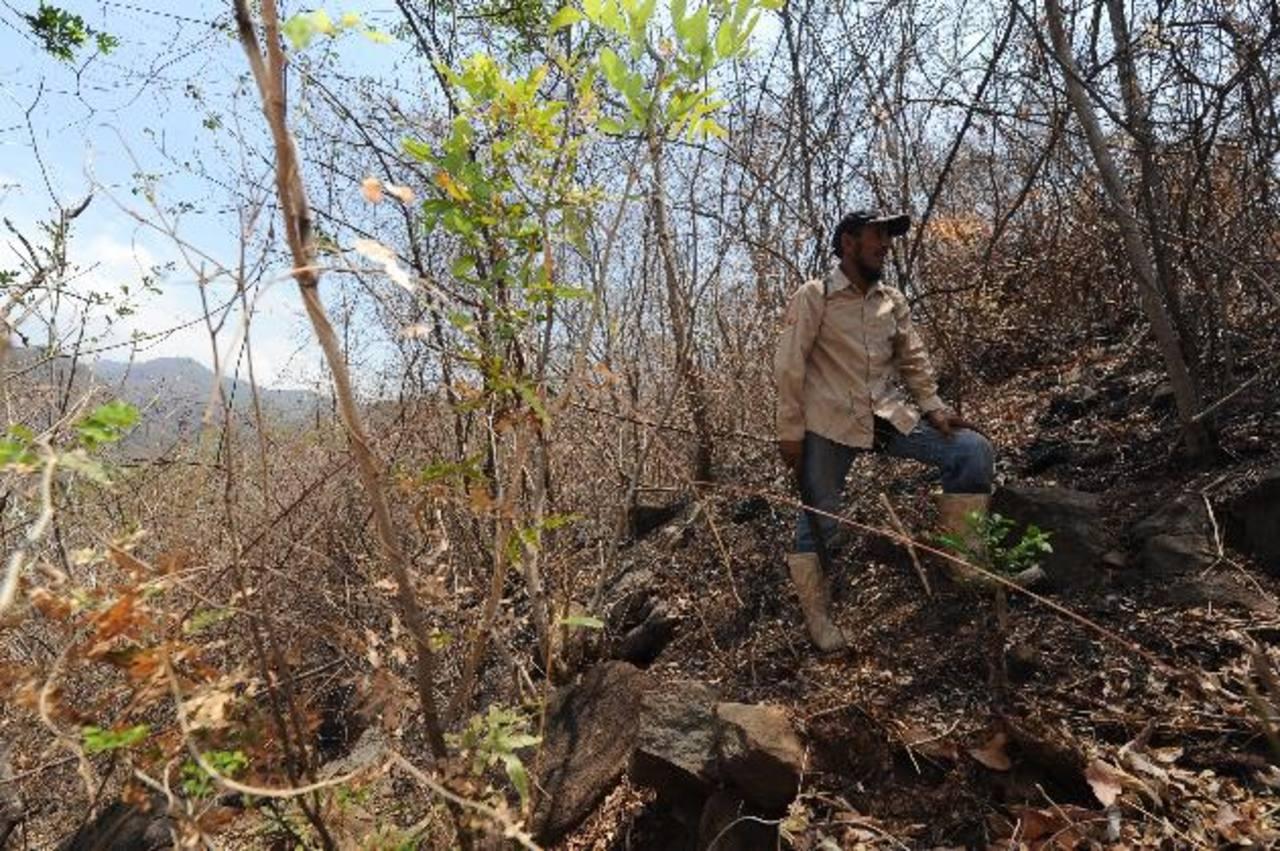 Un incendio consumió las 205 hectáreas que comprenden el Área Natural Protegida de El Caballito a inicios de marzo. Guillermo Martínez, guardarrecursos Ad Honorem es consciente de que los bomberos no llegaron a ayudarle porque estaban luchando contra