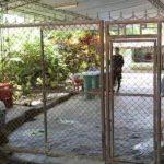 El convicto por asesinato permanece en su casa tras recibir un beneficio judicial. FOTO EDH /ARCHIVO
