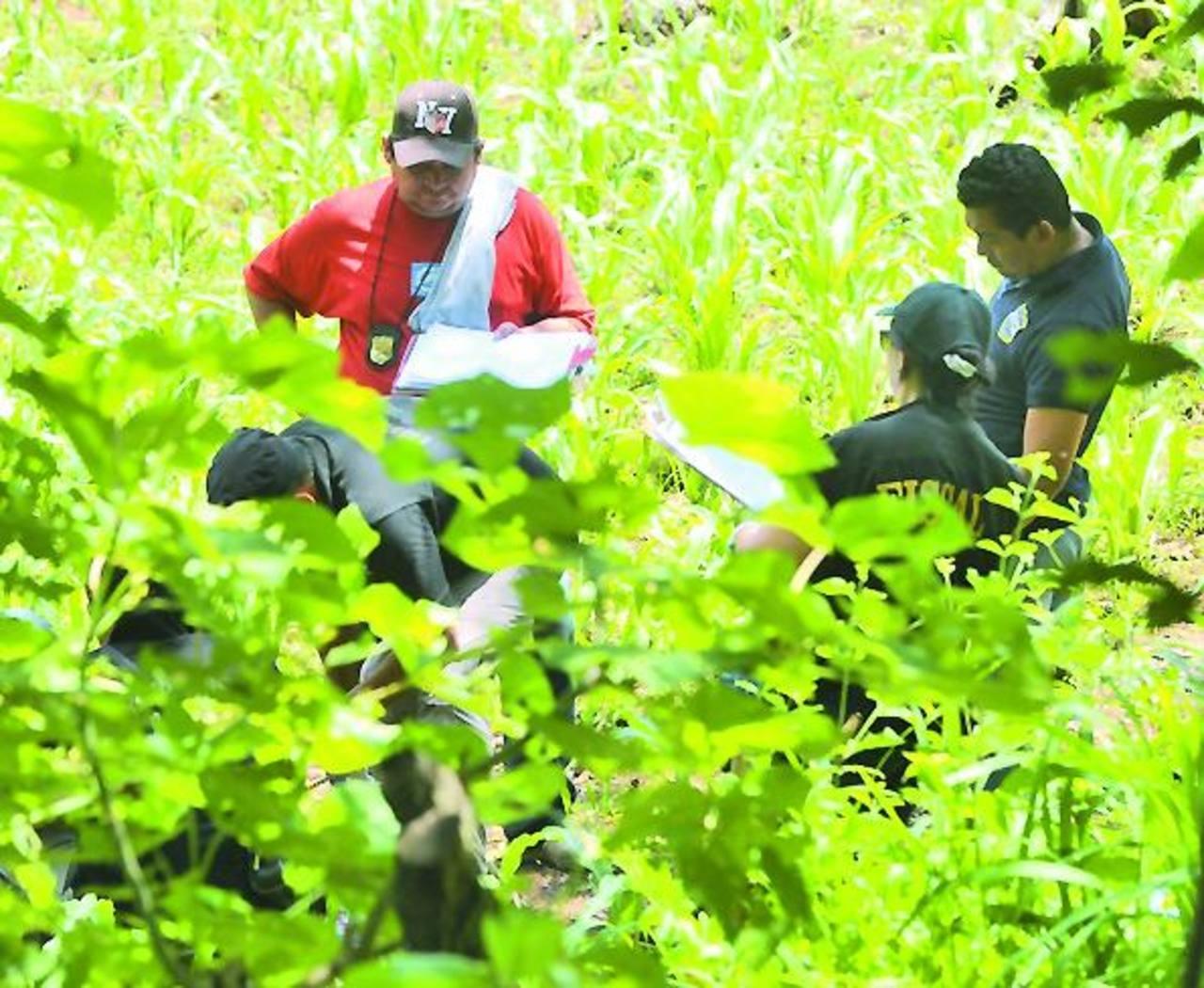 Policías inspeccionan el lugar donde ayer fue asesinado un hombre en Panchimalco. Foto EDH / ericka chávez