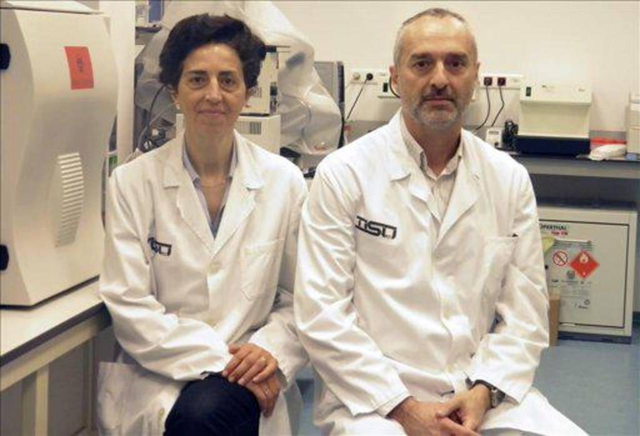 Especialistas que trabajan en la nueva clínica que pretende ayudar a salvar vidas de animales.