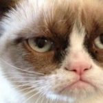 Grumpy Cat salta de la web al cine