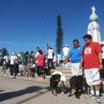 Salvadoreños celebran el Día del Perro Callejero
