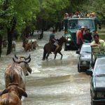Las emergencias derivadas de fenómenos naturales han provocado retroceso a la economía en el país. Foto EDH/ archivo