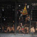 Las bartolinas policiales de San Vicente están sobre saturadas. Hay reclusos con sentencias definitivas que aún permanecen bajo la vigilancia policial. Foto EDH / Marlon Hernández