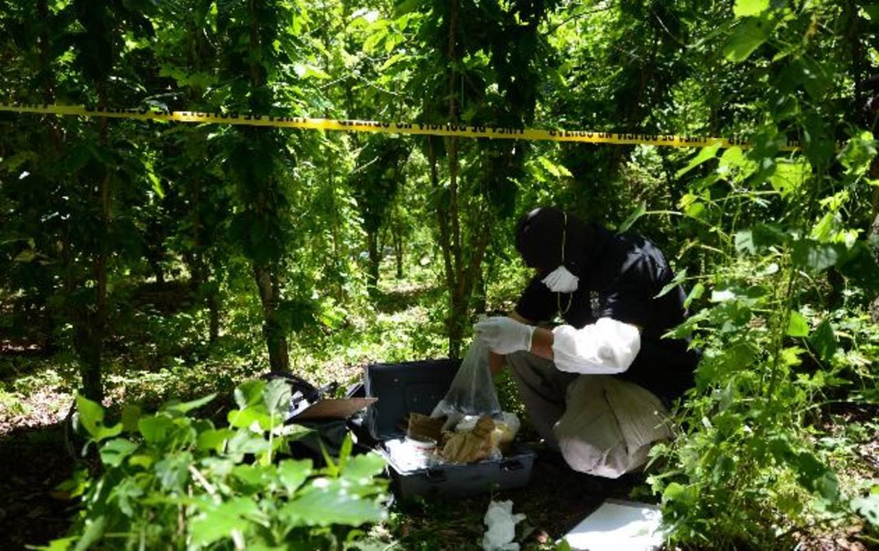 Técnico de la Policía levanta evidencias del sitio donde hallaron el cadáver de un hombre en San Juan Opico. Foto EDH / Jaime Anaya