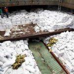 Trabajadores panameños de pie sobre sacos de azúcar debajo de los cuales se encontraron armas en un barco de Corea del Norte. Foto/ AP