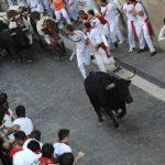 Estados Unidos realizará encierros de toros similares a los de las fiestas en San Fermín en Pamplona, España. Foto/ Archivo
