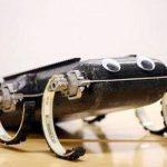 El robot saltarín X-RHex Lite es mostrado en la Universidad de Pensilvania. Foto/ AP