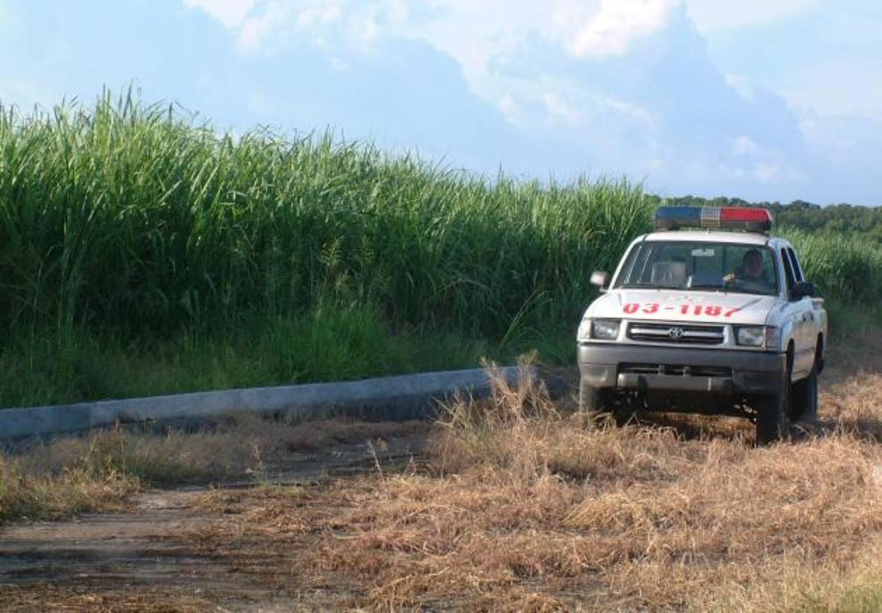 La Policía custodió la zafra pasada. foto edh / archivo