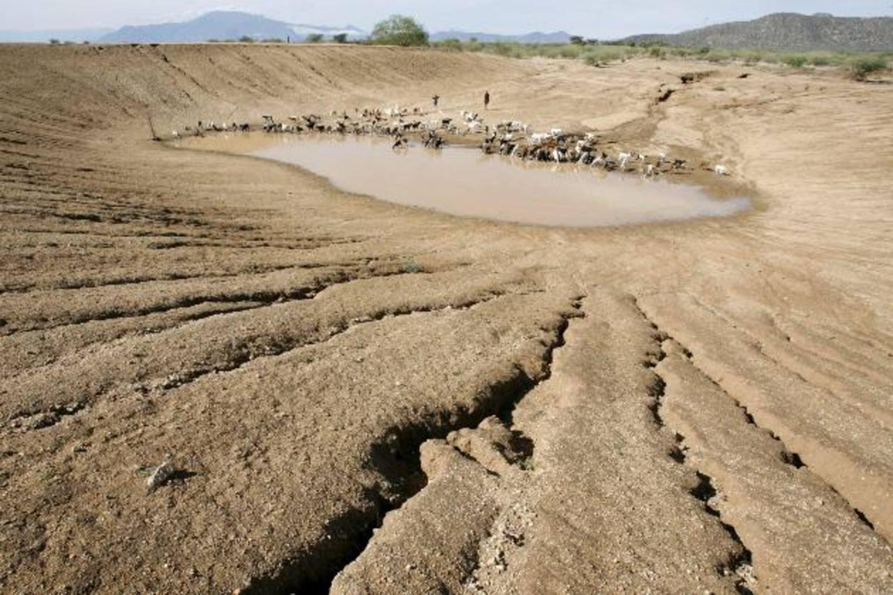 El calentamiento global es un umbral de peligrosos cambios como más sequías. Foto EDH