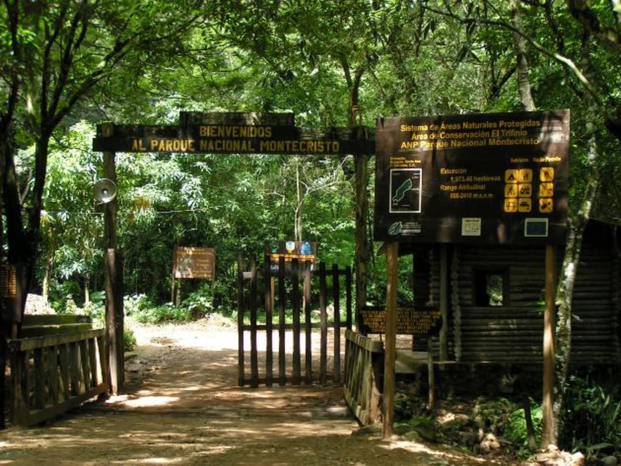 El parque, que está en el norte del departamento de Santa Ana, tiene una extensión de 1 ,973 hectáreas de bosque nebuloso. Foto EDH / archivo