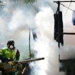 Las autoridades de Salud de El Salvador piden a la población eliminar los criaderos de zancudos. foto EDH / archivo