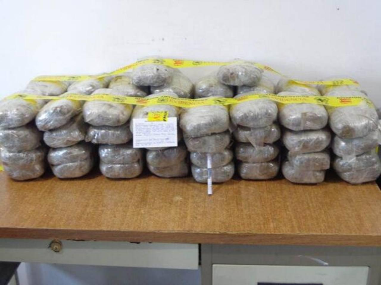 Los 70 libras de marihuana estaban distribuidos en 42 paquetes. Foto cortesía PNC