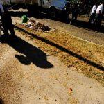 Ilopango es uno de los seis municipios que ya no tendrán apoyo financiero para el programa PATI. Foto EDH / Archivo